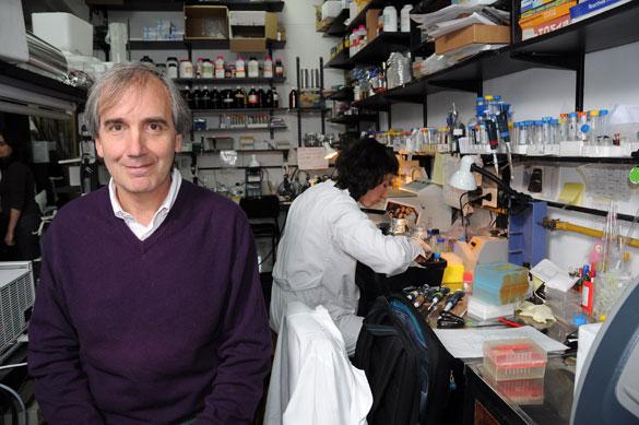 Alberto Kornblihtt en su laboratorio. Foto: CePro-EXACTAS