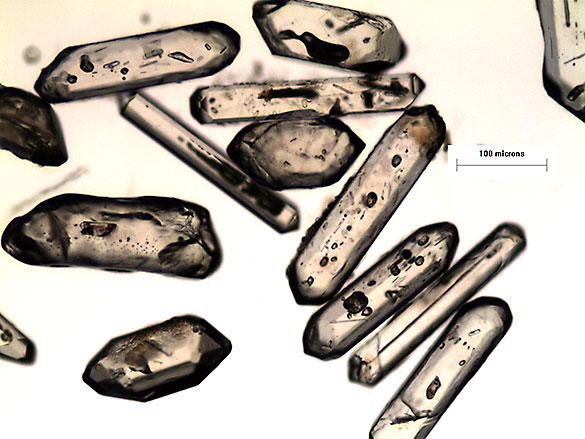 Microfotografías de cristales de circones volcánicos separados de la Formación Vaca Muerta, cuenca Neuquina (escala en micrones). Gentileza: Maxi Naipauer