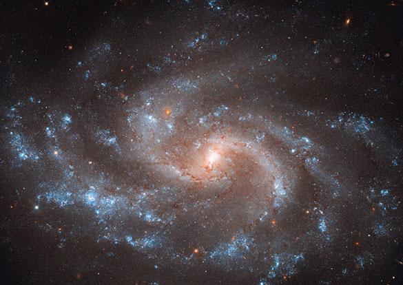 NASA/A.Riess/L.Macri