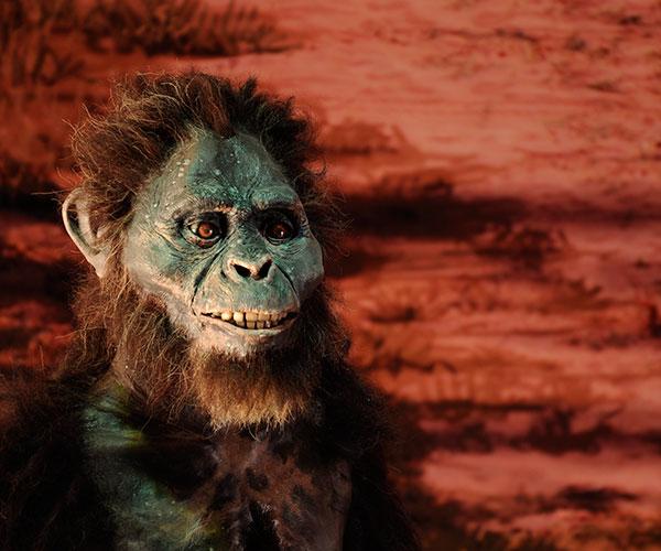 Recreación de un Australopithecus afarensis en Laetoli (Tanzania) hace 3.700.000 años. Muestra Tecnópolis 2014. Foto: Diana Martinez Llaser