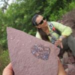La roca en primer plano muestra uno de los cráneos hallados del Timonya anneae. En este caso se trata de un juvenil. Foto: Roger M.H. Smith.