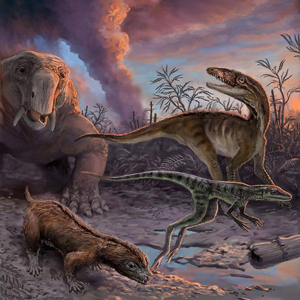 En la imagen se observa un grupo de animales que escapan de un volcán en erupción hace 235 millones de años en el noroeste de Argentina. Las especies, que se encuentran como fósiles en la Formación Chañares, incluyen ancestros de los mamíferos (el dicinodonte Dinodontosaurus en el fondo a la izquierda, y el cinodonte Massetognathus en primer plano a la izquierda) y los precursores de dinosaurios (Lewisuchus en el fondo a la derecha, y Lagerpeton en primer plano a la derecha). Ilustración: Victor Leshyk.