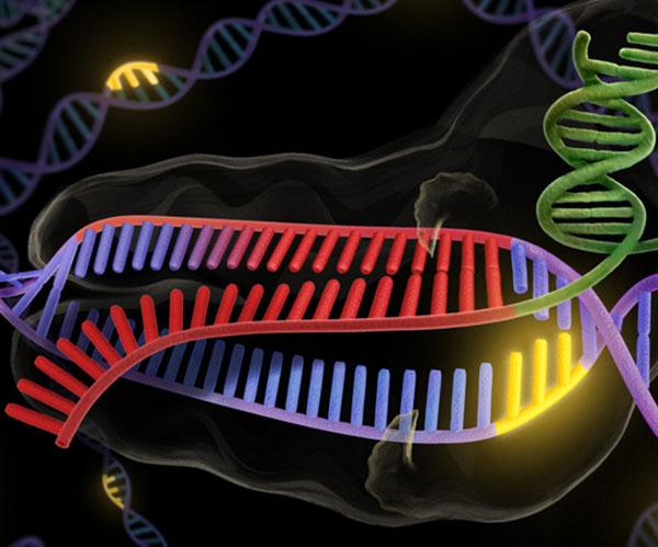 genes_N