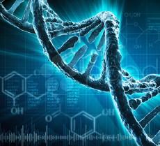 DNA._T
