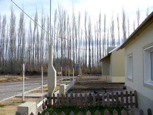 Las viviendas de las poblaciones rurales están muy próximas a los emprendimientos frutícolas, cuyo límite está marcado por la hilera de álamos que se observan en la foto.