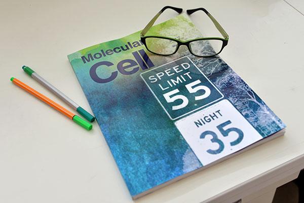 La investigación fue publicada en tapa por la prestigiosa revista Molecular Cell.