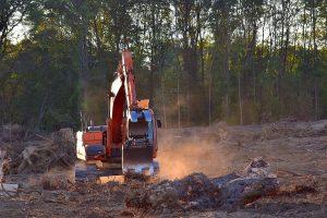 La destrucción de bosques nativos genera una contribución muy importante en la emisión de gases a la atmósfera.