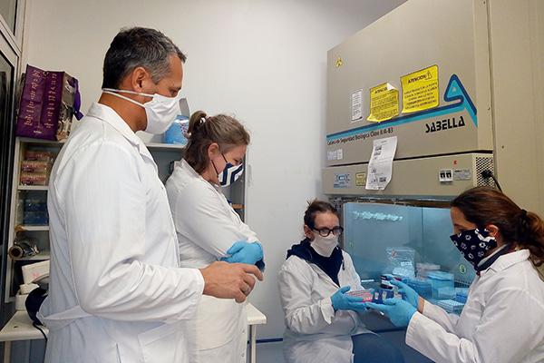 El PCR es considerado el método de diagnóstico de mayor sensibilidad pero testea de modo individual. El sistema puesto a punto en Exactas UBA, propone reunir varias muestras en un solo test.