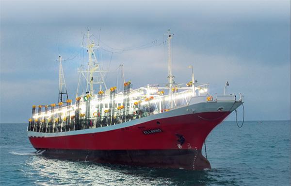 La investigación presenta un gran potencial para la industria pesquera nacional y para la sustentabilidad y conservación del ecosistema.